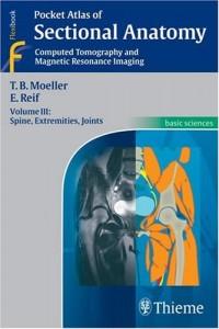 anatomia-radiologica